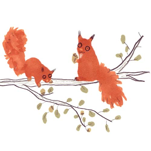 Jo Clark Squirrels Illustration