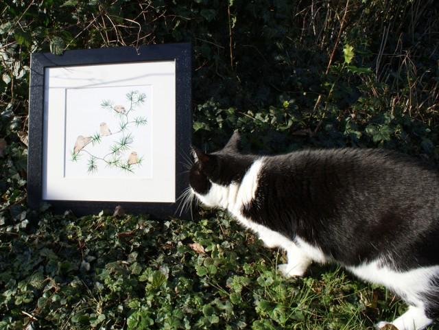 Jo Clark design framed print birds