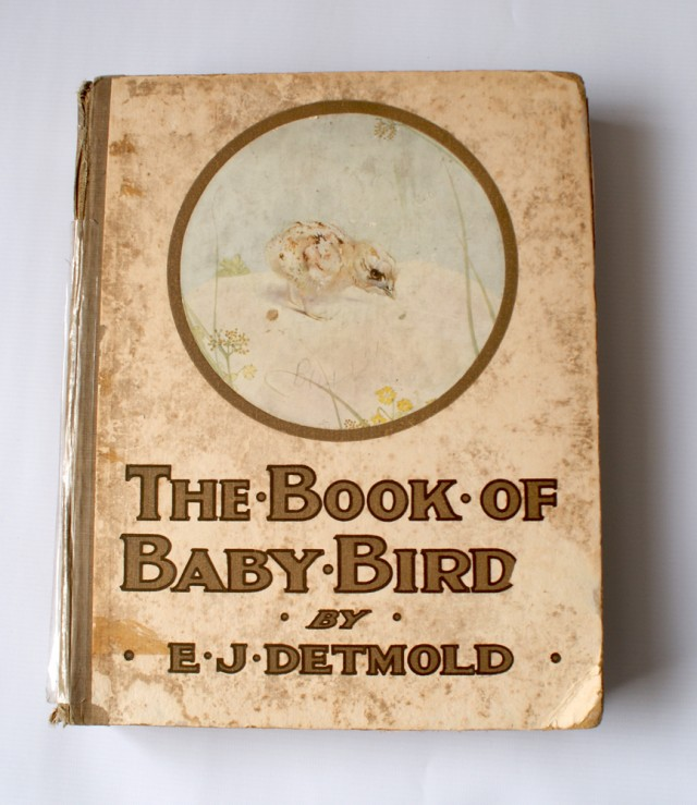 Old book on birds