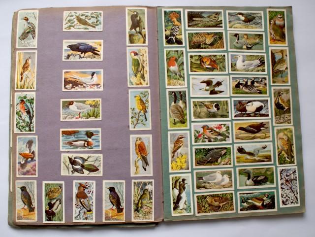 lovely scrapbook full of tea cards