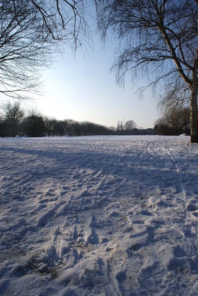 snowy park cambridge jo clark