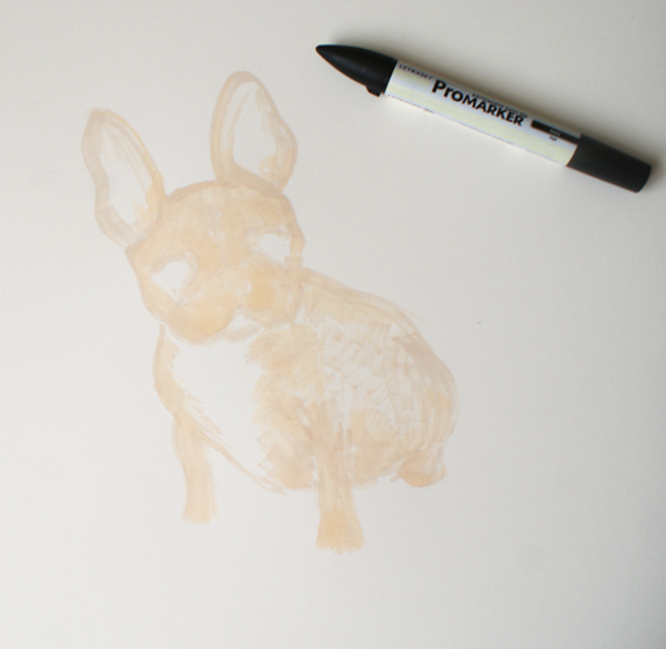 picture of french bulldog commission in process