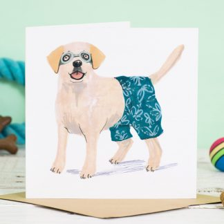 labrador dog in shorts card