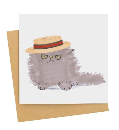 grey fluffy cat in boater hat