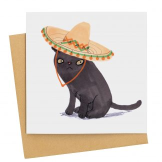black cat in sombrero