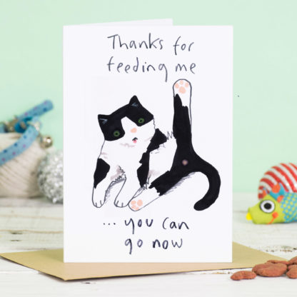 Hope You're Feline Better Soon Get Well Soon Card