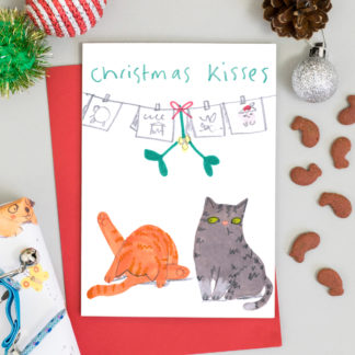 cute funny christmas cats beneath mistletoe