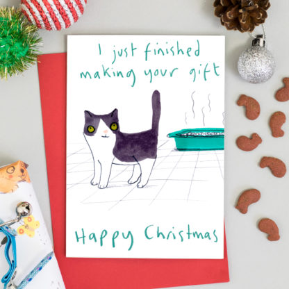 Cat Christmas gift in litter tray funny cat Christmas card