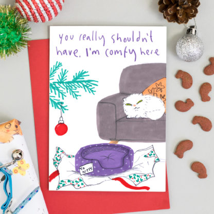 Cat on sofa ignoring new cat bed present - Funny cat Christmas card