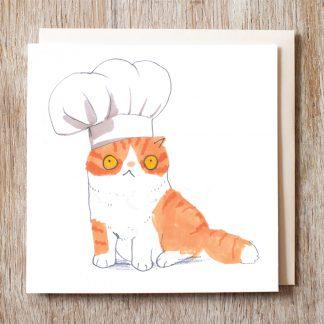 Cat In Bakers Hat