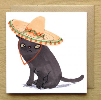 Cat In Sombrero Hat