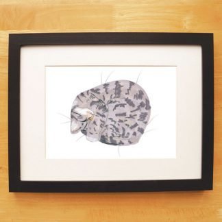 Cat Nap Print Tabby Cat