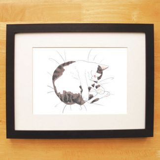 Cat Nap Print Tabby & White Cat