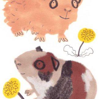 Guinea Pigs Sticker Set One