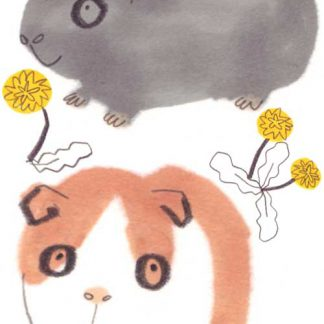Guinea Pigs Sticker Set Two