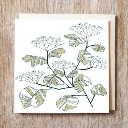 Elderflower Card