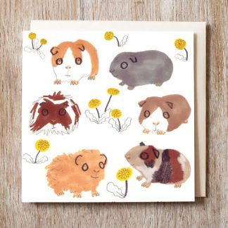 Guinea Pigs Card