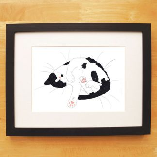 Cat Nap Print Black & White Snoozing Cat
