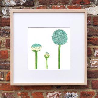 Allium Blooming Art Print