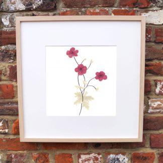 Cranesbill Flower Art Print