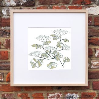 Elderflower Art Print