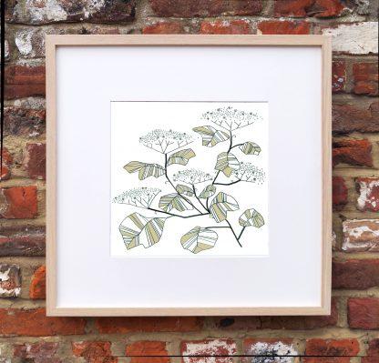 Elderflower Art Print