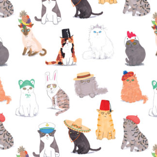 cats in hats gift wrap