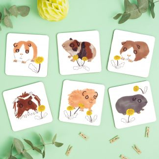 Guinea Pig Design Coasters set of six
