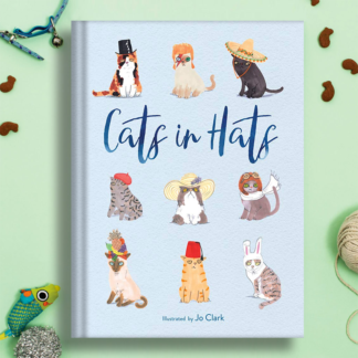 cats in hats illustrated book